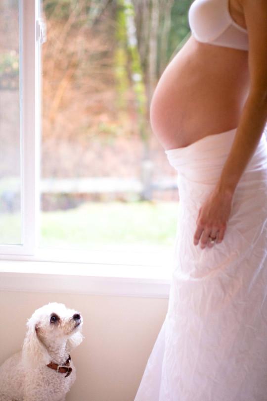 jennifer-macniven-photography-portfolio-maternity-nina
